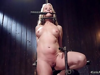 Milf gagged in metal stock whipped
